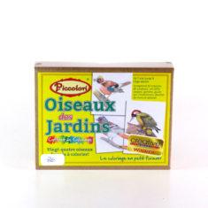 oiseaux-des-jardins