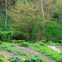 Planter pour la biodiversité