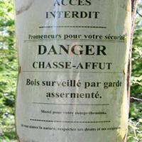 Deuxième dérive de la chasse en Wallonie : l'appropriation de la forêt par les chasseurs (2/5)