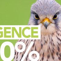 Campagne de communication sur le thème de l'urgence pour nos oiseaux !