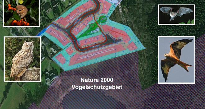 Pétition : pas d'urbanisation à Völkersberg Hergenrath – Sauver les Muscardins