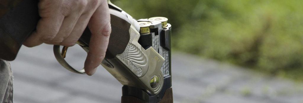 Trois Belges sur quatre sont opposés à la chasse  et plébiscitent une actualisation de la loi