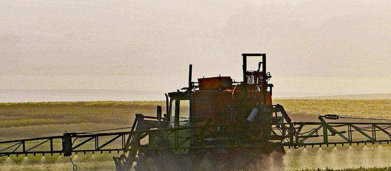 Oiseaux et pesticides