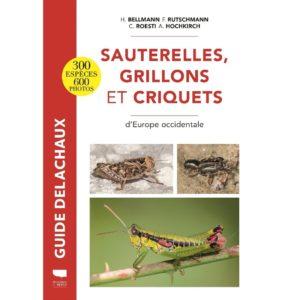 Sauterelles-grillons-et-criquets-dEurope-occidentale-Guide-Delachaux