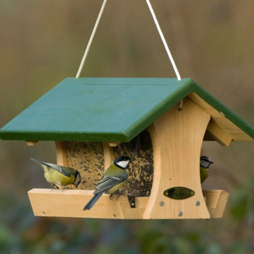 mangeoire oiseaux graines