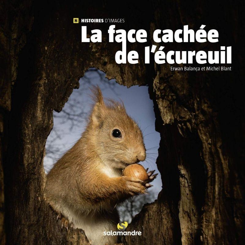 La face cachée de l'écureuil – Ligue Royale Belge pour la Protection des  Oiseaux